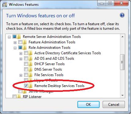 Selecting the Remote Desktop Services Feature